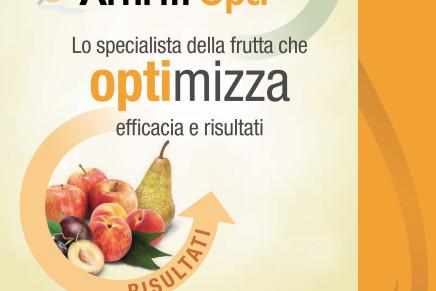 Affirm Opti, la risposta di Syngenta ai lepidotteri della frutta