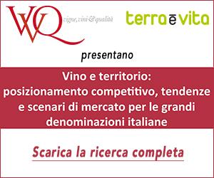 Vino e territorio:Posizionamento e competitività delle grandi Denominazioni italiane