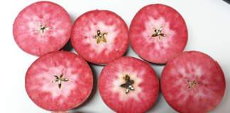 mele a polpa rossa