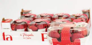 Club varietale fragola