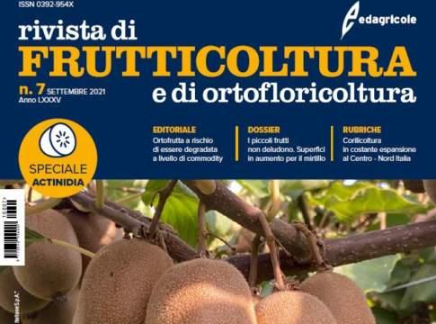 Frutticoltura 7